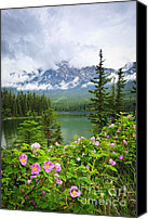 Alberta Landscape Canvas Prints - Wild roses and mountain lake in Jasper National Park Canvas Print by Elena Elisseeva