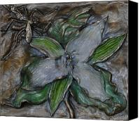 Wild-flower Reliefs Canvas Prints - Wild Trillium and Cranefly Canvas Print by Dawn Senior-Trask