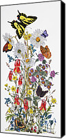 Monarch  Canvas Prints - Wildflowers and Butterflies of the Valley Canvas Print by Constance Widen