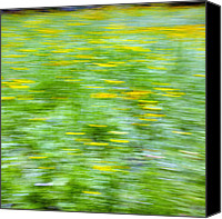 Signed Canvas Prints - Wildflowers and Wind 3 Canvas Print by Skip Nall