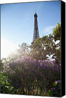 Lush Foliage Canvas Prints - Wildflowers In Front Of The Eiffel Tower Canvas Print by Paul Hudson
