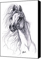 Horse Drawing Canvas Prints - Wind In The Mane 2 Canvas Print by Angel  Tarantella