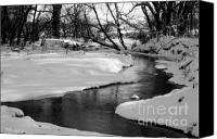 White River Scene Canvas Prints - Winding River Canvas Print by Julie Lueders