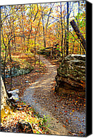 Marty Koch Canvas Prints - Winding Trail Canvas Print by Marty Koch