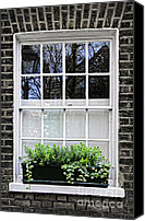 Construction Canvas Prints - Window in London Canvas Print by Elena Elisseeva