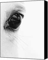 Black And White Canvas Prints - Window to the Soul Canvas Print by Ron  McGinnis