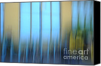 Impressionism Photo Canvas Prints - Windows And Walls Canvas Print by Catherine Lau