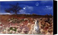 Wallaby Canvas Prints - Winds of a Blue Moon Canvas Print by Holly Kempe