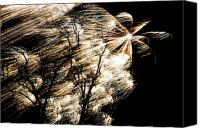 4th Canvas Prints - Windy Fireworks Canvas Print by Gert Lavsen
