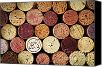 Winery Canvas Prints - Wine corks Canvas Print by Elena Elisseeva
