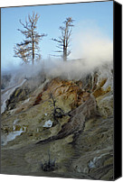 Yellowstone Park Canvas Prints - Winter at Yellowstones Mammoth Terrace Canvas Print by Bruce Gourley