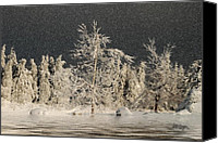 Photomanipulation Canvas Prints - Winter Begins Canvas Print by Lois Bryan