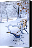 Forest Canvas Prints - Winter bench Canvas Print by Elena Elisseeva