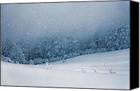 Storm Photo Canvas Prints - Winter Blizzard Canvas Print by Evgeni Dinev