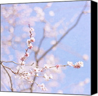 Pink Flower Branch Canvas Prints - Winter Blossom Canvas Print by Jill Ferry