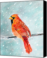 Storm Pastels Canvas Prints - Winter Cardinal Canvas Print by Flo Hayes