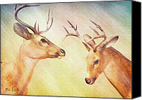 Deer Canvas Prints - Winter Deer Canvas Print by Bob Orsillo