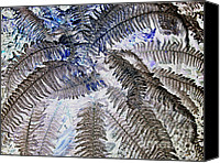 Impressionism Digital Art Canvas Prints - Winter Fern 2 Canvas Print by Heiko Koehrer-Wagner