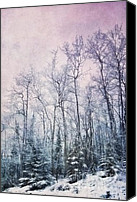 Textured Landscape Canvas Prints - Winter Forest Canvas Print by Priska Wettstein