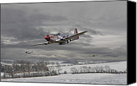 P51 Mustang Canvas Prints - Winter Freedom Canvas Print by Pat Speirs