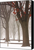 Red Cardinal Canvas Prints - Winter In The Woods Canvas Print by Thomas York