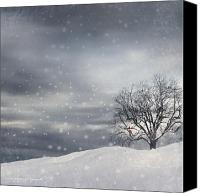Four Season Landscapes Canvas Prints - Winter Canvas Print by Lourry Legarde