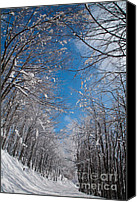 Bulgaria Canvas Prints - Winter Road Canvas Print by Evgeni Dinev