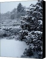 Trees Canvas Prints - Winter Canvas Print by Roberto Alamino