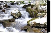 Williams Canvas Prints - Winter Stream Canvas Print by Thomas R Fletcher