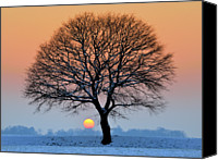 Winter Canvas Prints - Winter Sunset With Silhouette Of Tree Canvas Print by Pierre Hanquin Photographie