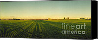 Winter Solstice Canvas Prints - Winter Wheat on the shortest day Canvas Print by Jan Faul