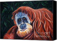 Orangutan Painting Canvas Prints - Wise One - Orangutan Paintings Canvas Print by Michelle Wrighton