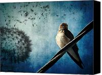 Photo-manipulation Canvas Prints - Wishing Swallow Canvas Print by Nancy  Coelho
