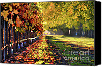 Fall Leaves Canvas Prints - Wispy Fall Canvas Print by Mars Lasar
