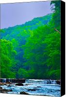 Valley Green Canvas Prints - Wissahickon Creek Canvas Print by Bill Cannon