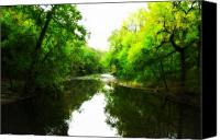 Valley Green Canvas Prints - Wissahickon Morning Canvas Print by Bill Cannon