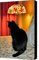 Witch Halloween Cat  Wicca Canvas Prints - Witches Cat Canvas Print by Michelle Milano