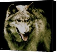 Wolf Photo Shot Canvas Prints - Wolf Of The Night Canvas Print by Debra     Vatalaro