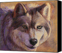 Wolf Pastels Canvas Prints - Wolf Study Canvas Print by Billie Colson