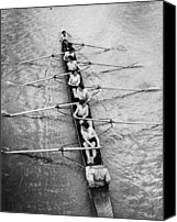 Group Of Women Canvas Prints - Womens Rowing Canvas Print by William Wanderson