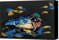Fall Leaves Canvas Prints - Wood Duck and Fall Leaves Canvas Print by Carol Sweetwood