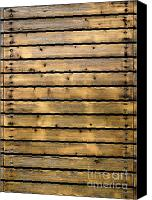 Backdrop Canvas Prints - Wood Planks Canvas Print by Carlos Caetano