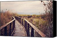 Israel Canvas Prints - Wooden Path On The Lake Canvas Print by Copyright Anna Nemoy(Xaomena)