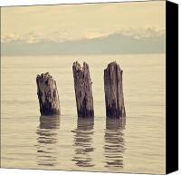 Mountain View Photo Canvas Prints - Wooden Piles Canvas Print by Joana Kruse