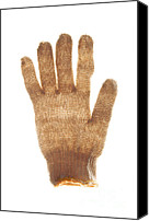 Glove Canvas Prints - Woolen glove Canvas Print by Bernard Jaubert
