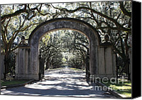 Live Art Canvas Prints - Wormsloe Plantation Gate Canvas Print by Carol Groenen