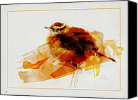 Wren Digital Art Canvas Prints - Wren Time Canvas Print by Ron Jones