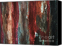 Barn Mixed Media Canvas Prints - X Treme Texture Canvas Print by Marsha Heiken