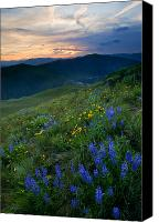 Hillside Canvas Prints - Yakima River Canyon Sunset Canvas Print by Mike  Dawson