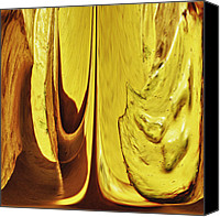 Fine Photography Art Canvas Prints - Yellow 2 Canvas Print by Skip Nall